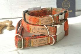 Orange Harris Tweed Dog Collar